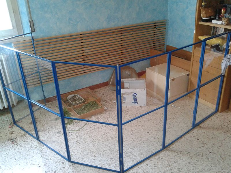 Cerca for Costruire recinto per cani